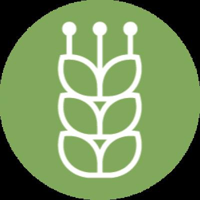 Отрасль Сельское хозяйство